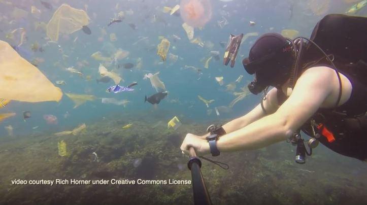 Marine Plastics
